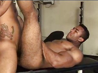 Huge Muscled Hairy Guy Sought-after To Get Fucked