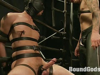 Christian Wilde and a new sub