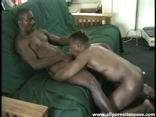 Hot black gay bodies in blowjob integument